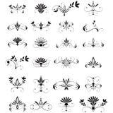 Large set of floral design elements. Vector large set of floral design elements Royalty Free Stock Images