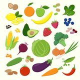 Large set of fruits, vegetables and berries in flat design isolated on white background. Vegetarian food Infographic royalty free illustration