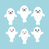 Large set Funny white fur seal pups, cute winking. Seals with pink cheeks and big eyes. Kawaii animals albino on blue background. Vector illustration Stock Photos