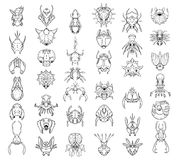 Large Set of Hand Drawn Top Down Cartoon Creatures and Monsters Stock Photos
