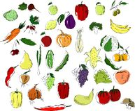 A large set of multicolor fruits and vegetables black on a white background stock illustration