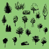 Large set of vector silhouettes of trees Stock Photography