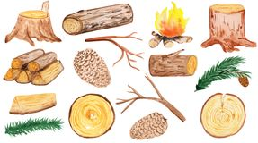 A large set of wooden elements - stump, cones, pine branches, firewood, branches, logs and round saw cuts. aqua