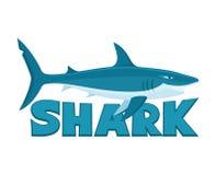 Large shark on a white background. Illustration of a large shark on a white background Royalty Free Stock Photo