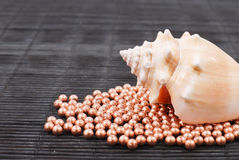 Large Shell on Copper Beads Stock Photography