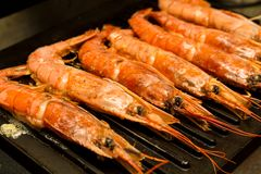 Large shrimp whole langoustines bbq on the background of an iron. Grill grate Stock Photo