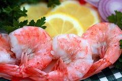 Large Shrimps Royalty Free Stock Photo