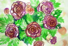 Large shrub roses painted colors Royalty Free Stock Photo