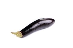 Large single eggplant. Stock Photography