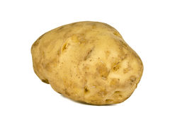 Potato. Large size potato  on white background. This giant potato, about 6 inch long when weighed found to be approx. 450 gms Royalty Free Stock Image