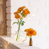 Flowers in the bright home interior. Large and small bouquets of orange chrysanthemums in vases in the autumn bright home interior. Comfort and beauty at home stock photography