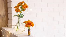 Flowers in the bright home interior. Large and small bouquets of orange chrysanthemums in vases in the autumn bright home interior. Comfort and beauty at home stock image