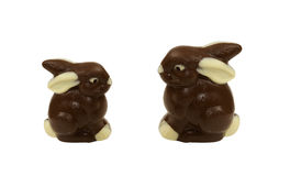 Large and small chocolate Easter bunnies Stock Images