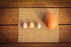 Large and small eggs Royalty Free Stock Image