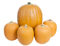 Large and Small Pumpkins Royalty Free Stock Photo