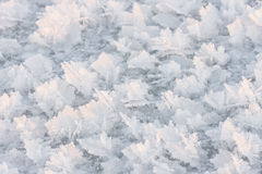 Large snow crystals closeup Royalty Free Stock Image