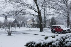 Big snow flakes falling in Spring Royalty Free Stock Image