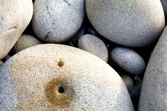Large spherical sea boulders on shore Stock Images