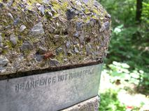 Large Spider on Signpost at Bearfence on Appalachian Trail Royalty Free Stock Image