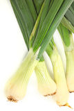 Large Spring Onions Royalty Free Stock Photography