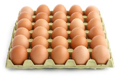 Large square tray of eggs Royalty Free Stock Images