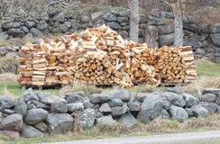 Large stack of birch firewood Royalty Free Stock Images