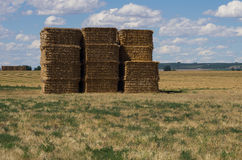 Large stack of hay bales under cloud studded sky Stock Photo