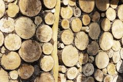 A large stack of pine logs stacked for collection from plantation.  royalty free stock photos
