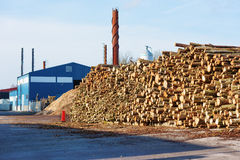 Large stack of wood Stock Photo