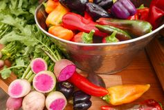 A large stainless steel bowl filled with multi-colored peppers and purple daikon radishes royalty free stock photography