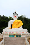 Large statue of buddha. The under construction statue of buddha.Verry large size on the hill Stock Images