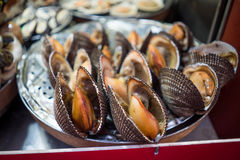 Large steamed scallop royalty free stock photos