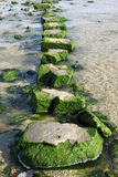 Large stepping stones across a stream. stock photos