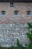 Large stone wall of an ancient castle, overgrown with massive ivy branches in Lviv, Ukrain. E Royalty Free Stock Images