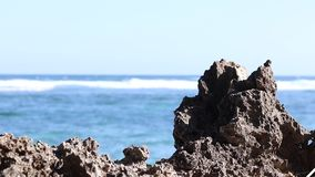 Large stones against the backdrop of the ocean. Bali, Indonesia. Ocean background. stock video