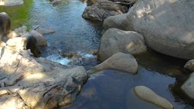 Large stones and rocks in mountain river. Mountain waterfall and stony river in tropical forest. Rapid river flow. Between big stone creating waterfall stock video footage