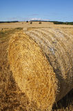 Large straw haystack in rural landscape. Golden straw in countryside field Stock Photos