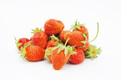 Large strawberries Stock Photography