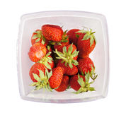 Large strawberry in the container Royalty Free Stock Photo
