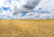 Large stubble field with low clouds Royalty Free Stock Photos