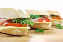 Large sub sandwiches closeup Stock Image