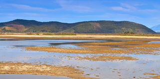 Large swamp area in Greece Royalty Free Stock Images