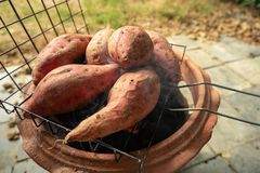 Large sweet potato burned on the grill. Suitable for cold weather and camping royalty free stock photography