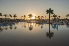 Large swimming pool in a luxury tropical hotel resort at sunrise Royalty Free Stock Photo