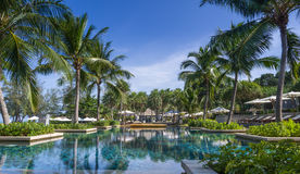 A large swimming pool at a resort in Phuket, Thailand. With palm trees surrounding it Stock Images