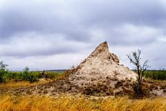 Large Termite Hill or Ant Hill in Kruger National Park Stock Photo
