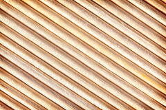 Large texture of the bamboo sticks Stock Image