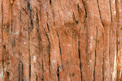 Large and textured red old wooden grunge background Stock Image