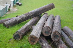 Large timber for construction. Stock Photography