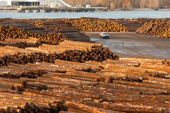 Large Timber Wood Log Lumber Processing Plant Riverside Columbia. Timber Wood Log Lumber Processing Plant Riverside Columbia River Royalty Free Stock Image